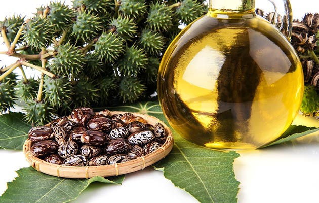 Castor OIl For Abortion