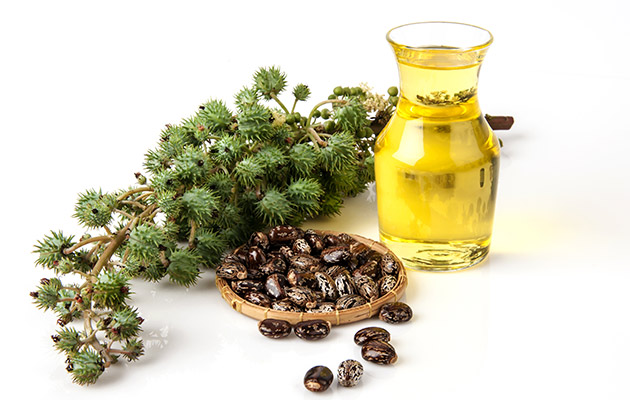 Castor Oil For Abdomen
