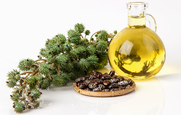 Castor Oil For Stomach